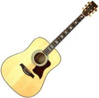 tanglewood_acoustic_guitar_tw1000_1.jpg